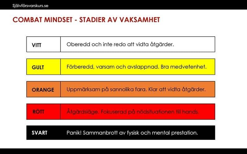 COMBAT MINDSET - STADIER AV VAKSAMHET